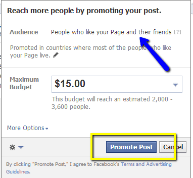 How to set up the Facebook Promote so it goes ONLY to 'People who like your Page', not their Friends too!